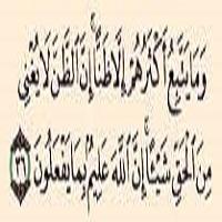 آیه نفی گمان در اعتقادات